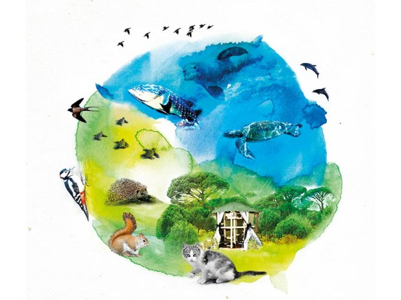 paloma-environmental-movement-1